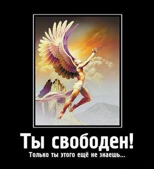 Свобода!